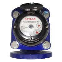 Ирригационный счетчик воды Baylan (IP68) W-0i Dn65 (ХВ)